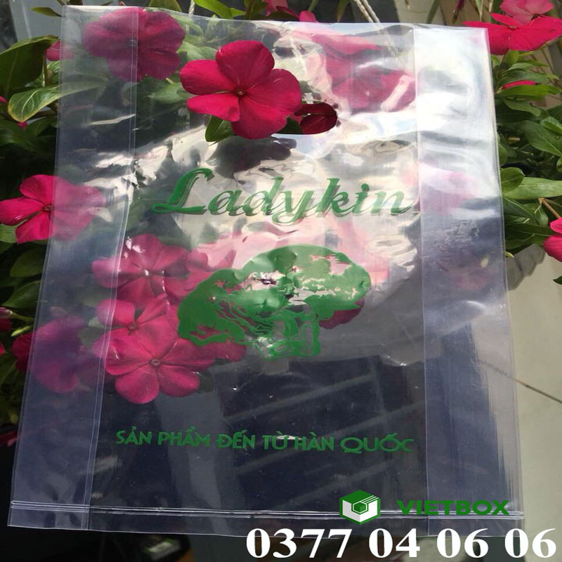 Túi ni lông in hình của Ladykin