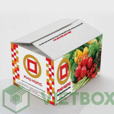 thùng carton Phu Hung in offset
