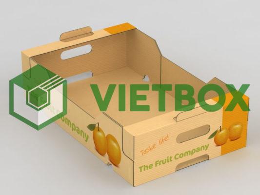 thùng carton in offset