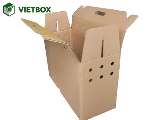 Thùng carton đựng gà không in